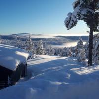 Gautefall, Orrebu- High-standard cozy cabin with whirlpool and sauna