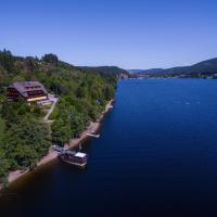 Alemannenhof - Boutique Hotel am Titisee, hotel in Titisee-Neustadt