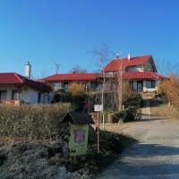 Penzion Nad jezerem, hotel in Pavlov