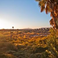 Palmwag Campsite, hotel in Palm