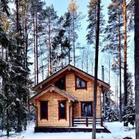 Уютный деревянный дом с камином в окружении сосен, отель в городе Александровка