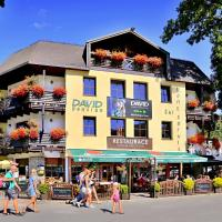 David Wellness Hotel – hotel w mieście Harrachov