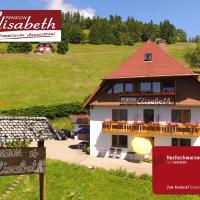 Pension Elisabeth, hotel in Todtnauberg