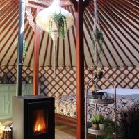Stay in Yurt