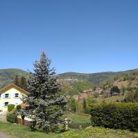 les sapins, hotel in Bussang