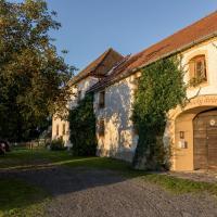 Penzion Vinicky dvůr, отель в городе Каплице