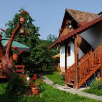Pensiunea Casa Butnarului