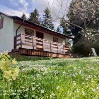 Domek na Wierchach