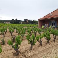 """Gîte """" Au Milieu des Vignes """", hotel a Le Castellet"""