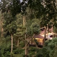 Serene Woods