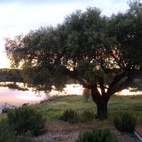 Fontes - A essência do Alentejo com lago privado, Hotel in Fontes