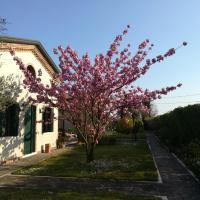Casa Pianta