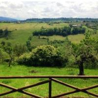 Beautiful country house in the Umbrian hills, hotel a Otricoli