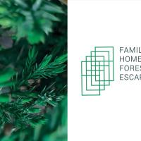 Family Home Forest Escape