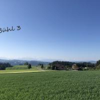 Bühl 3