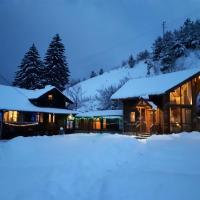 ski chalet Carmel, Rila mountain, near Borovets, hotel in Borovets