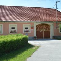 Ubytování U Zimů, Hotel in Vodňany