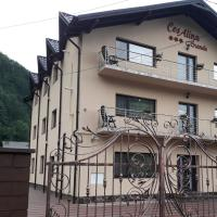 Pensiunea Cosalina Grande