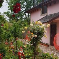 Pensiunea Happy Flowers, hotel in Tulcea