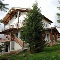 Casa de vacanta Two Brothers Concept, hotel din Păltiniş