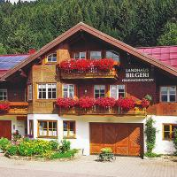 Country house Bilgeri Balderschwang - DAL01040-CYC