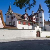 Romantik Restaurant Schloss Weinstein, hotel in Marbach St Gallen