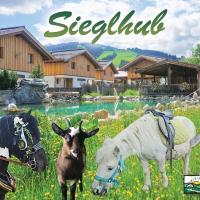 Sieglhub Chalets - Appartements - Hotel, hotel ve Flachau