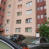 Apartment Milevi, hotel in Teteven