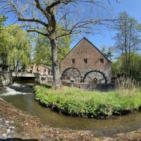 Domaine du Moulin d'eprave