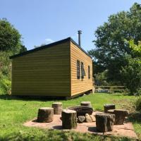 Cosy Foxglove Hut, hotel in Ashburton