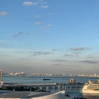 Miami Luxury Ocean and City View