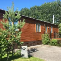 Woodpecker Lodge - timber lodge with hot tub, hotel in York
