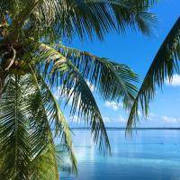 Sandingan Dive Resort, Hotel in Loon
