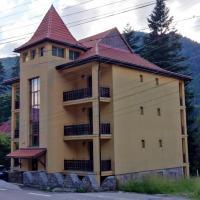 Fenyő Villa Bradul