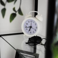 Apartment to the Petergof