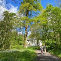 Blackhill Woods, hotel in Abbeyleix