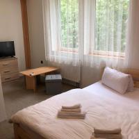 Pension Lomná, отель в городе Долни-Ломна