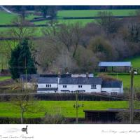 Cosy quirky cottage, hotel in Tollbar End
