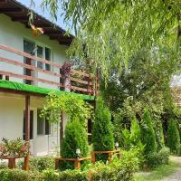 Vila Curtea de Arges, hotel in Curtea de Argeş