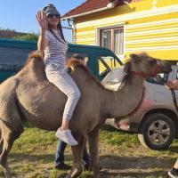 Casa de vacanță ZiaZian - Bărcut