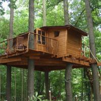 Treehouse v Brdech