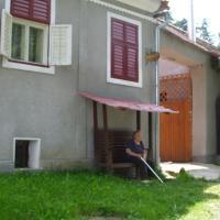 Casa de vacanta Enea, hotel in Viscri