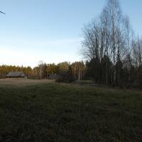 Viesnīca Silini Forest bathing experience pilsētā Jelgavkrasti
