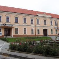 Hotel Jelen, hotel en Hlohovec