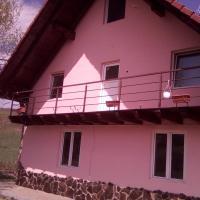 Casa Moldovan