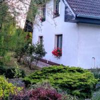 Vila v Podkrušnohoří, hotel in Jirkov