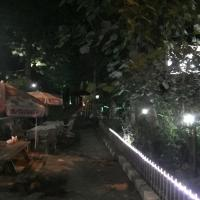 Saray otel restaurant, hotel in Artvin