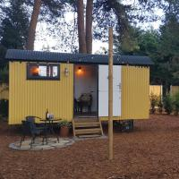 Forest Heath Shepherd's Hut