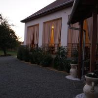 Casa Miriam, hotel din Păuliş