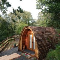 Owl Hut Cosy Ensuite Pod Snowdonia Coast Sleeps 2